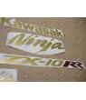 Stickers decals KAWASAKI ZX10RR