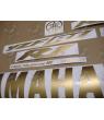 YAMAHA YZF-R1 YEAR 2002-2003 MATTE GOLD
