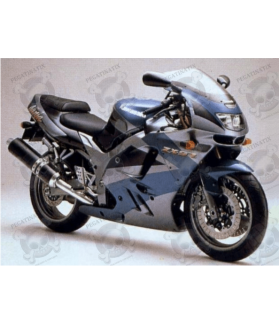 Kawasaki ZX-9R YEAR 1995 SILVER/GREEN/BLACK