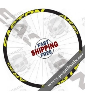 STICKERS WHEEL EASTON AR 30 DECALS KITS