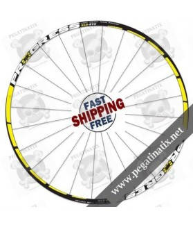 STICKERS WHEEL RIMS PROGRESS XCD-EVO B
