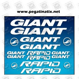 Stickers decals bike GIANT RAPID AM29