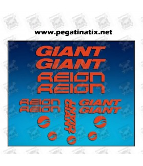 Stickers decals bike GIANT REIGN AM30