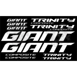 Stickers decals bike GIANT TRINITY