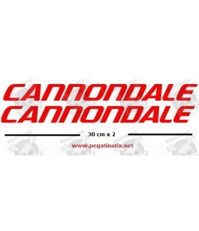 STICKER DECALS BIKE CANNONDALE SAECO