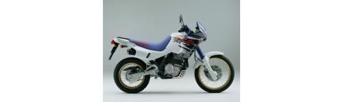 NX650 DOMINATOR